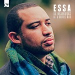 Essa - Misadventures of a Middle Man, 500